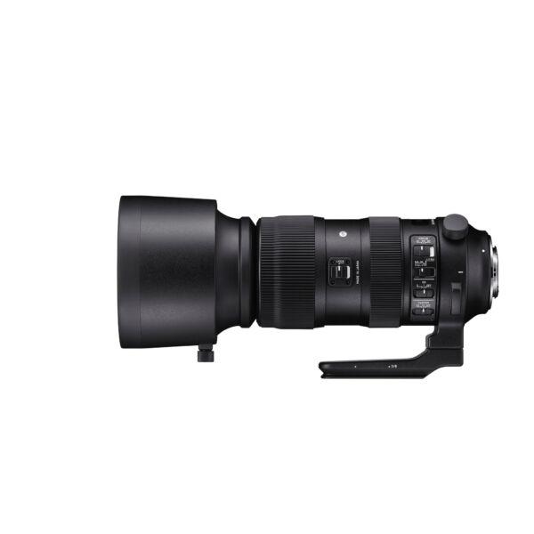 Sigma 60-600mm F/4.5-6.3 (S) DG OS HSM - NIKON